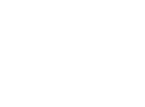 The Social Element